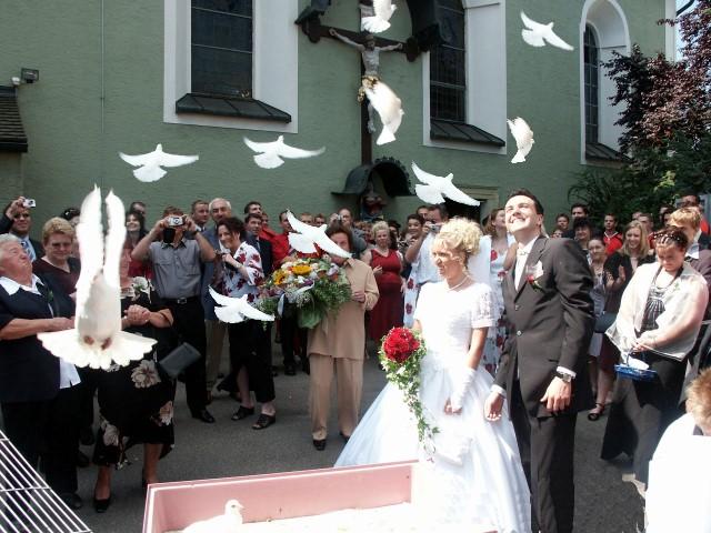 Hochzeitstauben Suss